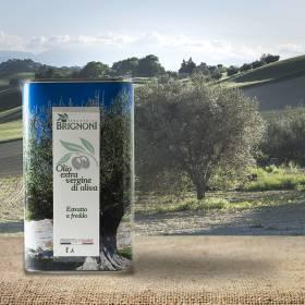 Lattina Olio Extravergine d'oliva 2019 - Frantoio Brignoni