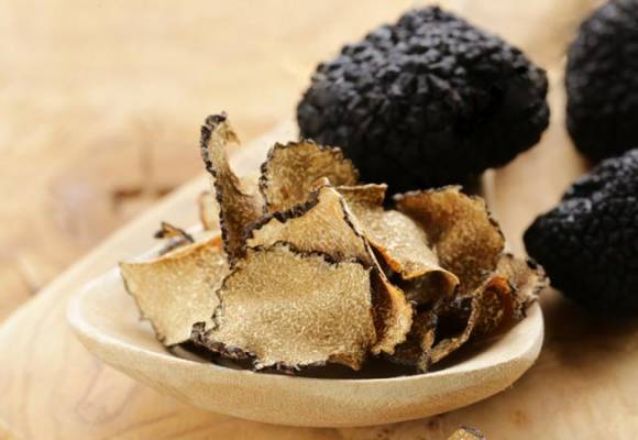 Tartufo: il fungo che vive sottoterra